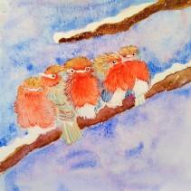 Petits oiseaux rouges En hiver